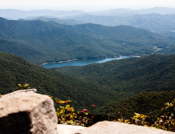 craggy gardens asheville travel journal rgdaily blog