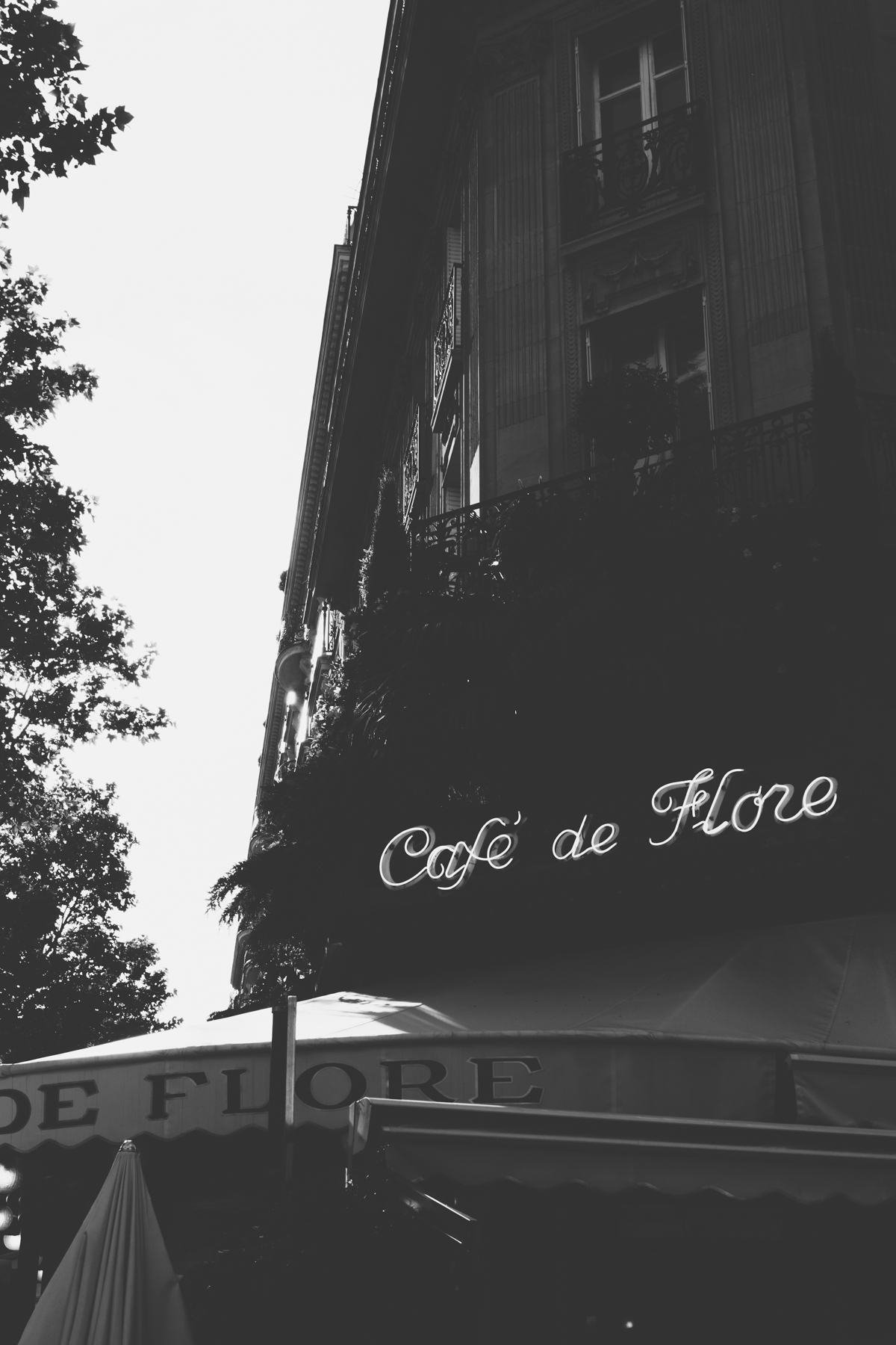 Paris In Black White Summer Snapshots Rg Daily